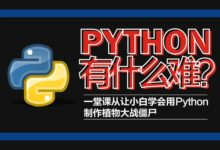Python轻松入门到项目实战课程