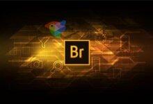 Adobe Bridge 2020 优化版v10.1.1.166.0