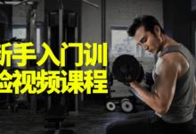 健身新手入门训练课程