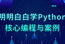 Python入门级核心编程与案例课程