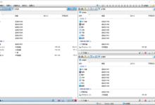 多窗口资源管理器Q-Dir v9.95优化版